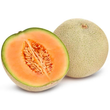 MELON CANTALOUPES US/HONDURAS