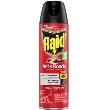 RAID ANT & ROACH AEROSOL OUTDOOR