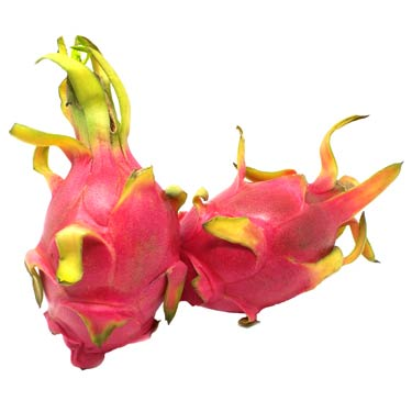 DRAGON FRUIT US